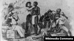 بازرسی یک برده آفریقایی پیش از خرید - اثر چاپی از کندهکاری چوب