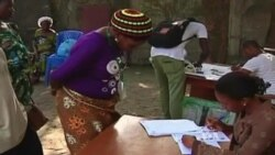 Nigerian Election Delay Draws Mixed Reaction