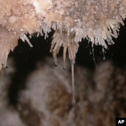 Snottite is a rare form of gooey, dangling, toxic bacteria that looks like mucus.