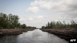 Daerah Niger Delta yang kaya minyak dan menghadapi peningkatan aksi kelompok militan.