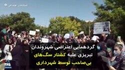 گردهمایی اعتراضی شهروندان تبریزی علیه کشتار سگهای بیصاحب توسط شهرداری
