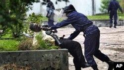 剛果防暴警察上星期在金沙薩抓住反對黨領袖齊塞迪克的一名支持者