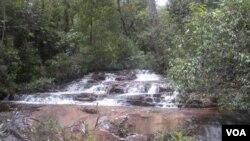 La perfecta armonía que el tiempo ha fraguado entre el agua, las rocas y la vegetación se expresa en forma sublime en los saltos de la Chapada Imperial.