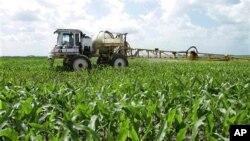 Para petani di Amerika banyak menggunakan teknologi GPS dalam menggarap lahannya untuk efektivitas kerja (foto:dok).