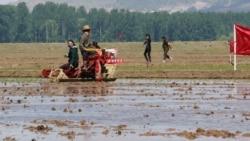 """[뉴스 풍경] 미국 내 탈북민들 """"북한 식량난 소식에 주민들 걱정"""""""