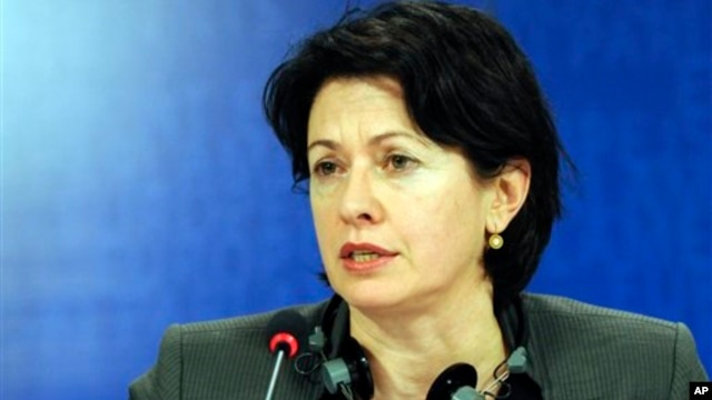 Chair of the European Parliament Subcommittee for Human Rights, Barbara Lochbihler, talks to the media, February 2010.