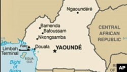 Raid Frees Foreign Hostages In Cameroon