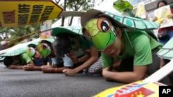 Para demonstran berkostum penyu laut saat melakukan protes di Konsulat China di Makati city, sebelah timur Manila, Filipina, Mei 2014 (Foto: dok).