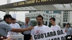 지난 2013년 5월 터키 앙카라의 농업부 청사 앞에서 환경단체 그린피스 회원들이 유전자변형농산물, GMO 반대 시위를 벌이고 있다.