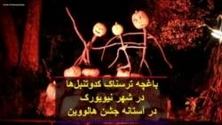 باغچه ترسناک کدوتنبلها در شهر نیویورک در آستانه جشن هالووین
