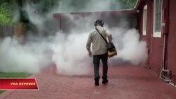 Mỹ ban lệnh cảnh báo hạn chế di chuyển vì Zika bùng phát