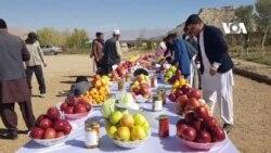 نخستین نمایشگاه سیب