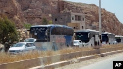 This photo from the Syrian official news agency shows buses carrying Syrian citizens who were evacuated from Damascus' besieged northeastern Barzeh neighborhood, May 8, 2017.