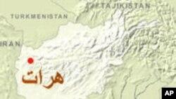 برنامه آموزش و حرفه سازمان صحی جهان در هرات