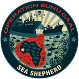Sea Shepherd is helping to monitor Senegal's 700 meter long coastline. (Sea Shepherd)