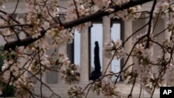 The Thomas Jefferson statue in the Jefferson Memorial on the Tidal Basin in Washington.
