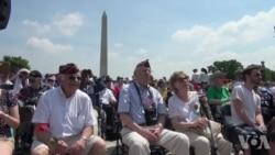 二战飞机飞越华盛顿 庆祝欧洲胜利日70年
