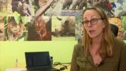 O impacto da guerra sobre a vida animal em África
