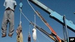عکس العمل ایران در برابر فیصله نامۀ حقوق بشر