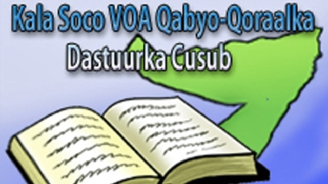 Graphic from VOA Somali Service website highlighting new program about the country's proposed constitution.