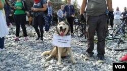 Arhiva - Jedan od protesta protiv izgradnje malih hidroelektrana na Balkanu, skup kraj rijeke Cijevina u Crnoj Gori.