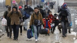 Mijëra fëmijë emigrantësh janë zhdukur