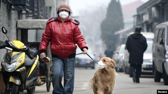 Un hombre y su perro, ambos con máscaras, caminan por la calle un día con alta polución del aire en Pekín.