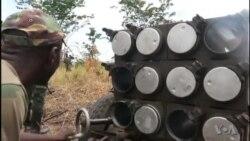 Opération de ratissage de l'armée congolaise dans le parc des Virunga (vidéo)