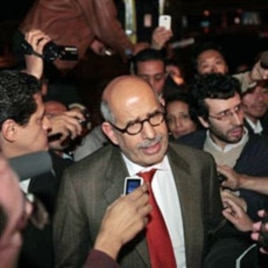 Mohamed ElBaradei (file photo)