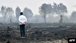 Presiden Joko Widodo ketika meninjau lahan yang terbakar di Pelalawan, Riau, 17 September 2019. (Foto: Biro Setpres via AFP)