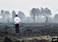 Presiden Joko Widodo meninjau lahan yang terbakar di Pelalawan, Riau, 17 September 2019. (Foto: Biro Setpres via AFP)