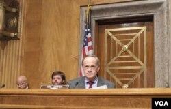 美国国会参议员卡尔珀主持听证(2013年11月19日)(美国之音 杨晨拍摄)
