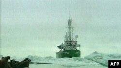 Do khí hậu khắc nghiệt ở Alaskam nếu dầu bị loang sẽ rất khó tẩy sạch