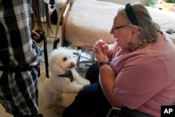 Eileen Nagle, 79, talks with Zeus, a bichon frise, as he visits her room at The Hebrew Home at Riverdale in New York, Wednesday, Dec. 9, 2020. (AP Photo/Seth Wenig)