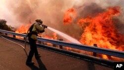 A firefighter battles a fire in Simi Valley, California, Nov. 12, 2018. (AP Photo/Ringo H.W. Chiu)