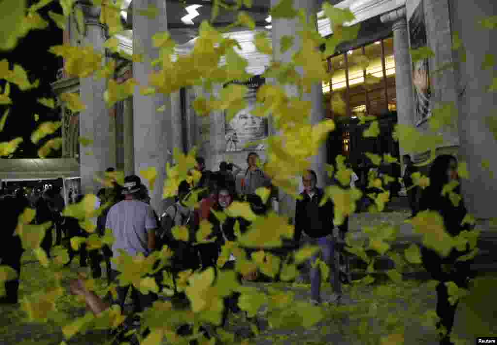 People stand outside the Palace of the Fine Arts surrounded by yellow paper butterflies after a public viewing of the ashes of late Colombian Nobel laureate Gabriel Garcia Marquez in Mexico City, April 21, 2014. Garcia Marquez died in Mexico on Thursday, at age 87.
