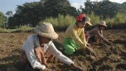 حمله پليس برمه به تظاهرات کم سابقه کشاورزان