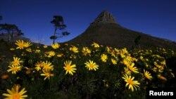 El invierno será más corto y la primavera llegará con mayor anticipación por los próximos cien años.