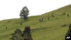 M23反叛分子在通往戈馬的山嶺上行進。