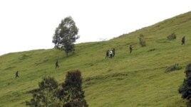 Des rebelles du M23 vus sur une colline surplombant Goma, à six kilomètres du centre de la ville – 3 décembre 3, 2012