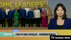 VOA连线:川普APEC演说,共和党议员:盼争取更多贸易协议