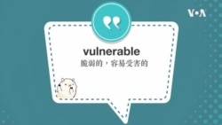 学个词 --vulnerable