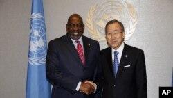 联合国秘书长潘基文会见马里总理