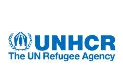 Baqattoota Gargaaruuf Maallaqi Oolu Dhumataa Jira: UNHCR