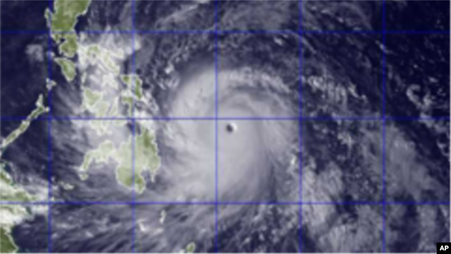 Typhoon Haiyan - large thumbnail