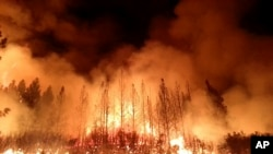 美國森林管理局提供最新圖片﹐優勝美地國家公園受到遭大火吞噬。