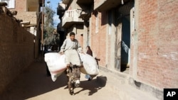 Other children also help out, using a common mode of transport, Kafr Torky, February 13, 2011