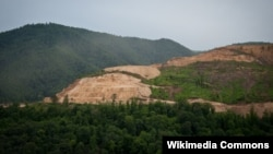 Teghut Strip Mining Forest Destruction by Vallex Corp in Armenia