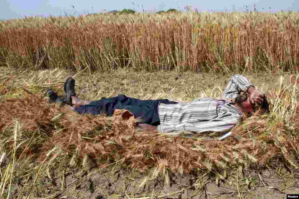 ان تصویروں کو دیکھ کر لگتا ہے کہ نیند واقعی نرم و گداز بچھونے کی محتاج نہیں۔