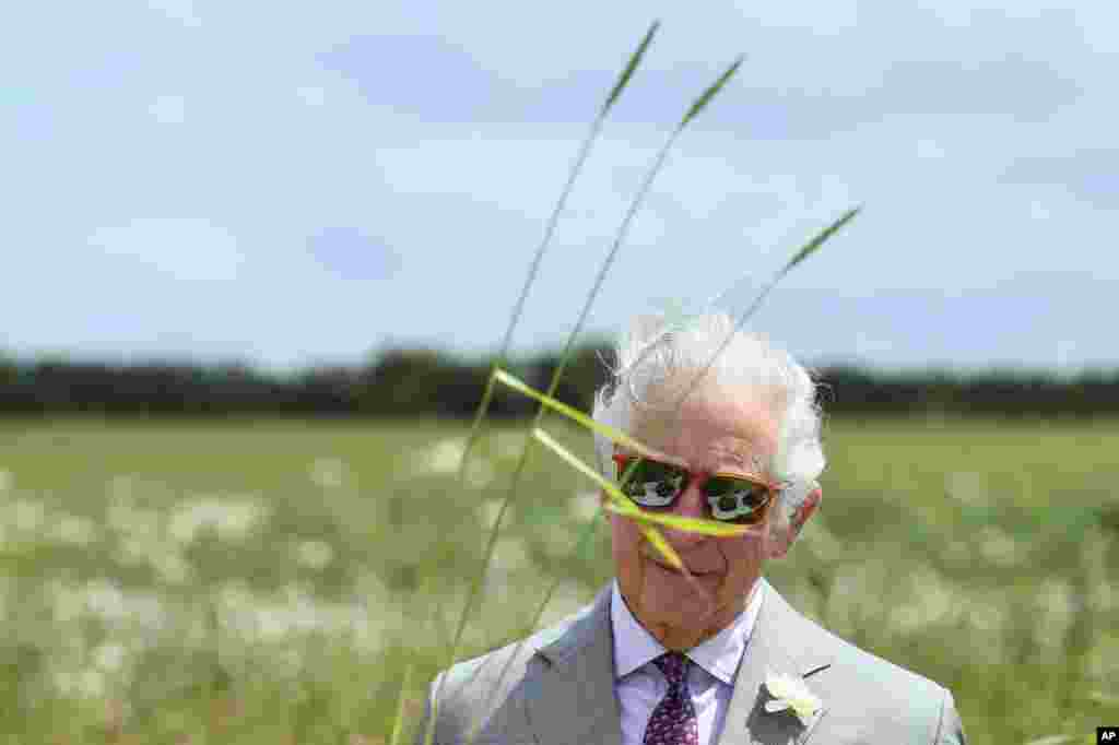 Britain's Prince Charles looks at soil samples during his visit to FarmED, a new center for farm and food education at Honeydale Farm, in Shipton-Under-Wychwood, England.